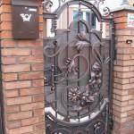 Двери и калитки (72)