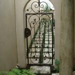 Двери и калитки (85)